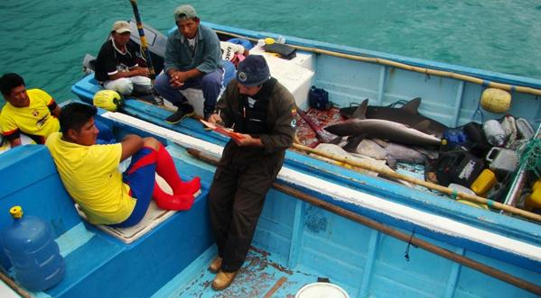 Shark fishermen